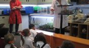 Grade 3 Students Visit the Ontario Science Centre
