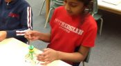 Mad Science After School Club- Erin Mills Campus