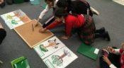 Grade Two – Botany Lesson Erin Mills