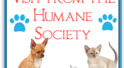 Visit from the Humane Society
